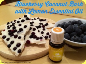 lemon blueberry coconut bark